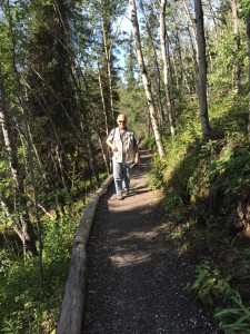 I was enjoying the beauty and solitude of Denali's hiking trails.