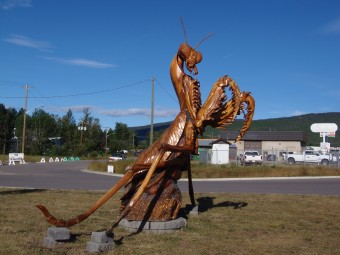 A chainsaw carved praying mantis in Chetwynd, B.C.